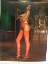 Baci Lingerie Red Lace Suspender Pantyhose ONE SIZE #44