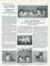 JAPANESE CHIN DOG WORLD 1969 BREED KENNEL ADVERT PRINT PAGE  YEVOT KENNELS