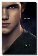 TWILIGHT SAGA BREAKING DAWN 2  JACOB TAYLOR LAUTNER TEASER POSTER PRINT 22x34