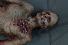 Movie Quality Zombie Body - Halloween Prop/Decoration The Walking Dead Corpse