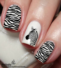 Zebra animal Nail Art Decal sticker