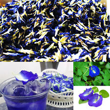 100% NATURAL DRIED BUTTERFLY PEA Herb Tea Food Coloring Healthy Drink Blue 50g