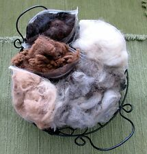 Artisan ALPACA Craft Sampler~Raw Fleece/Fiber/Wool~Needle Felting~5 Colors!