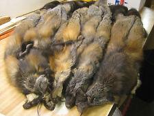 Tanned Dark XX LG Cross Fox Furs Coats Taxidermy Full Winter Pelt