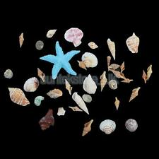 Natural Embellishments Sea Shells Starfish Craft Beach Weddings Party Decor