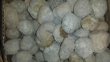 Packet of FIVE - Break your Own Geodes - Quartz Geodes - 200-500 Grams