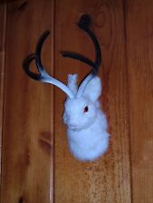 JACKALOPE Head Mount REALISTIC FURRY ANIMAL REPLICA r1803 wht FREE SHIPPING USA