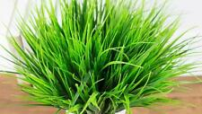 Hot 3Pcs Artificial Fake Plastic Green Grass Plant Flowers Home Office Art Decor