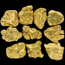 10 Pieces Alaska Natural Gold Nuggets - (#309b)