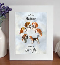 """Beagle 'Life is Better' 10"""" x 8"""" Mounted Picture Print Dog Pet Fun Gift Idea"""