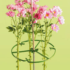 20 X 10 INCH ( 25cm ) PLANT/ FLOWER SUPPORT RING FOR BAMBOO CANES