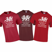 Wales Welsh Dragon Rugby Football Beat English Euros 6 Nations T-Shirt S-5XL