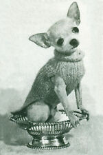 Sweet Little Chihuahua Dog Vintage Photo -  LARGE New Blank Note Cards