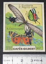 CHROMO 1936 CAFES GILBERT PAPILLONS BUTTERFLY EUCHARIE PAPILIO BOON CALLIMORPHE