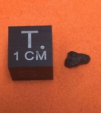 NWA 7034 Black Beauty Mars Rock 0.072g End Cut Martian by Meteorite Men Steve