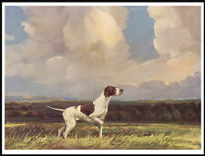 POINTER IN SCENIC BACKGROUND LOVELY DOG PRINT POSTER