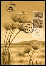 ISRAEL MK 1956 LAKE HULA SEE LAC PAPYRUS FLORA CARTE MAXIMUM CARD MC CM h1200