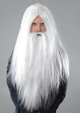 WHITE WIZARD WIG & BEARD HALLOWEEN COSTUME NEW