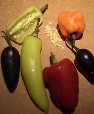 HOT & SWEET PEPPERS (52 seeds). Organic mix includes Jalapeno, Cayenne + Sweets!