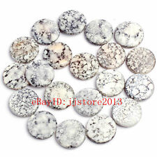 20mm Natural Gray Mixed Color Shell Coin Shape Gemstone Loose Beads Strand 15""