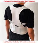 Adjustable Posture Corrector Belt for Lumbar Lower Back Support Shoulder Brace