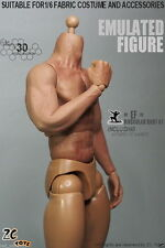 ZC Toys Muscular Figures Strong Body Doll Arms 3.0 Can Use for Hot Toy Head Game