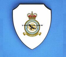 ROYAL AIR FORCE 905 EXPEDITIONARY SUPPORT WING WALL SHIELD (FULL COLOUR)