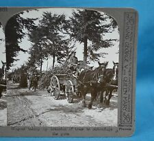 WW1 Stereoview Wagons Taking Up Branches Camouflage Guns Realistic Travels
