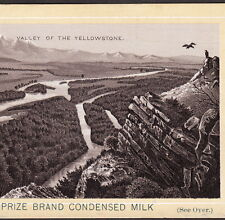 1890's Valley of Yellowstone National Park Vulture Photo Milk Advertising Card