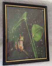 """8.25"""" x 10.25"""" Green/Red/Black Frog in Plastic Picture Frame"""