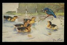 Ducklings Kingfisher bird with fish Tuck Oilette 9175 PPC