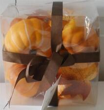 New Better Homes & Gardens Harvest Pumpkin Fall Leaves Vase Filler Gift Set 10Pc
