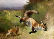 Excellent oil painting hare rabbit with dead fox in landscape Hand painted canva