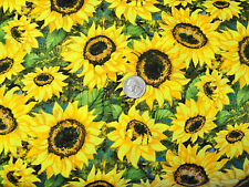 Welcome Friends Scare Crow Sunflower companion fabric quilt by Norchcott