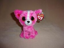 """TY MWMT PASHUN THE PINK CHIHUAHUA BEANIE BOO- 6"""" BEANIE BOOS- TOY SHOW EXCLUSIVE"""
