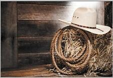 7x5FT Cowboy Indian Hat Straws Hay Custom Photo Studio Background Backdrop Vinyl