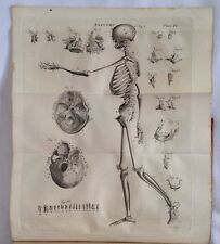 1830 Caspar Wistar A System of Anatomy 2 Volumes, Medical Anatomical Plates