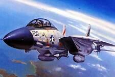 Hobby Boss F-14A Tomcat 3 Versionen VF-41 & 111 Modell-Bausatz 1:72 NEU OVP kit