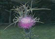 ScottishThistle Floral Landscape Painting Giclee Print Wall Art A3 flower art