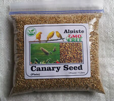 """ORGANIC"" Canary Seed Freshly packaged 100% natural (Alpiste) 1 Pounds / libras"