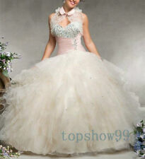 Beaded Ball Gown Princess Quinceanera Dresses Party Pageant Dresses Size 8