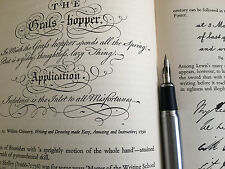 Jinhao X750 fountain pen G nib Super flex calligraphy copperplate Flexible