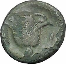 RHODES Island Off CARIA 394BC Nymph Rhodos ROSE Ancient Greek Coin i49612