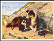 ROUGH COLLIE AND PUPPY CHARMING VINTAGE STYLE DOG PRINT POSTER