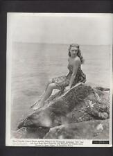 Charming Bathers 1948 Pin-up exhibit card Company Archive  PRODUCTION PHOTO #5