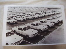 1965 FORD SHELBY MUSTANG STORAGE LOT  11 X 17  PHOTO /  PICTURE