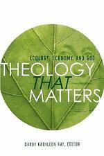 Theology That Matters : Ecology, Economy, and God by Darby Ray (2006, Paperback)