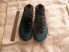 Nike Air Jordon Size 12 2013