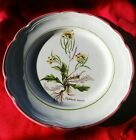 Primula decorata a mano Dinner Plate -Diplotaxis muralis - MADE IN ITALY