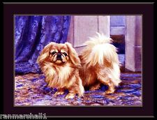 English Print Pekingese Puppy Dog puppies dogs Vintage Poster Art Picture